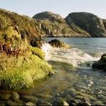 sea_rocks
